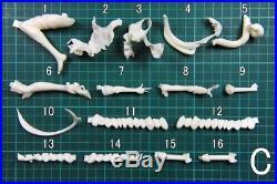 1/8 Kancolle Aircraft Carrier Princess girl Resin Model Kit Unpainted Hobby Toys